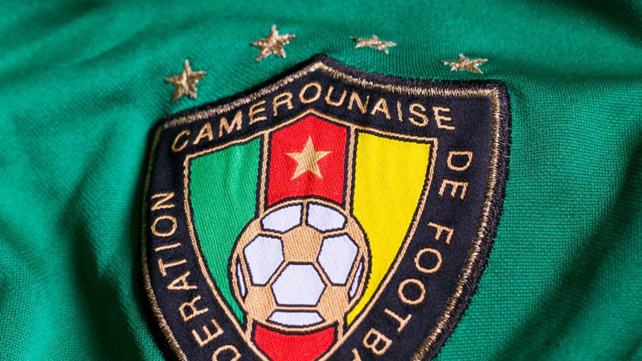 Puma Cameroon Jersey