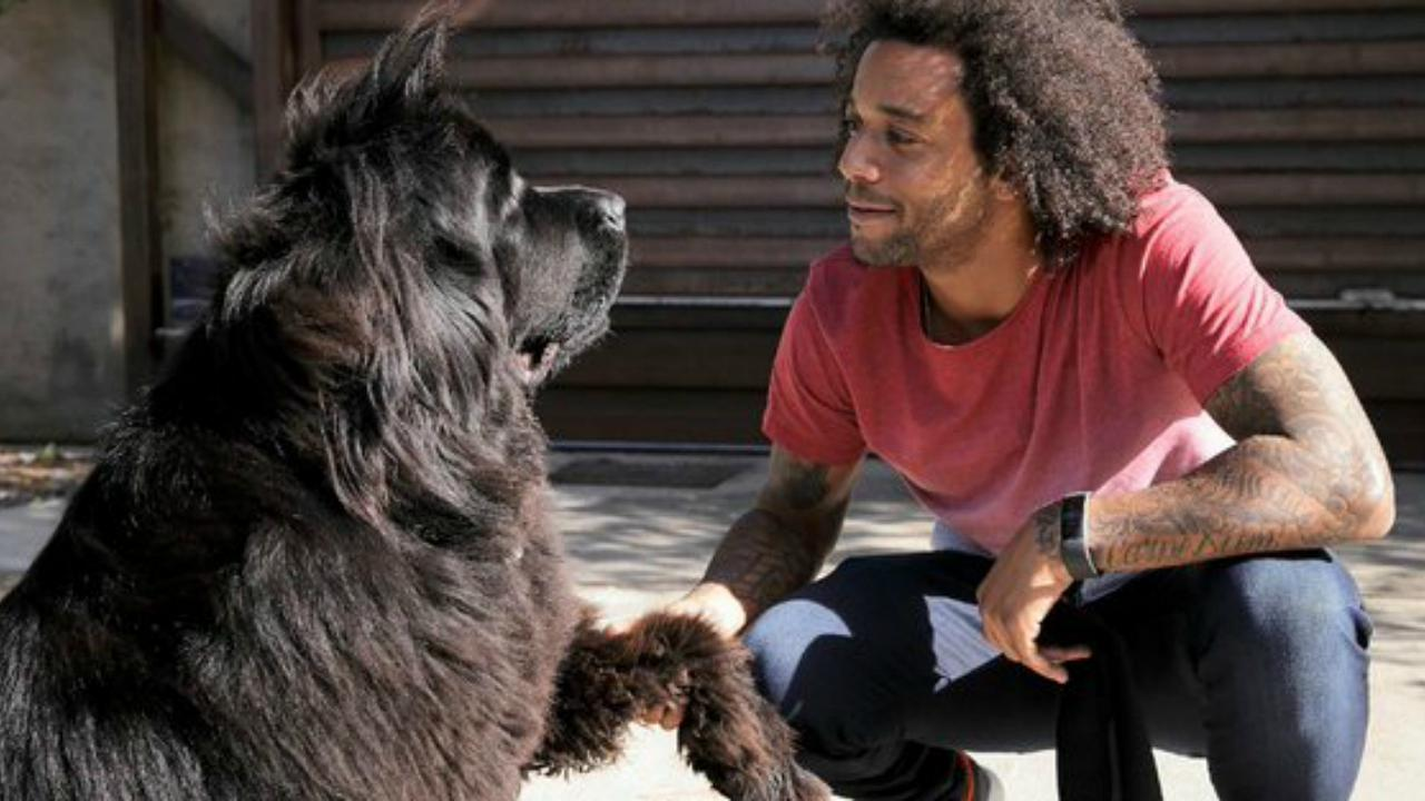 Marcelo and his dog Lola