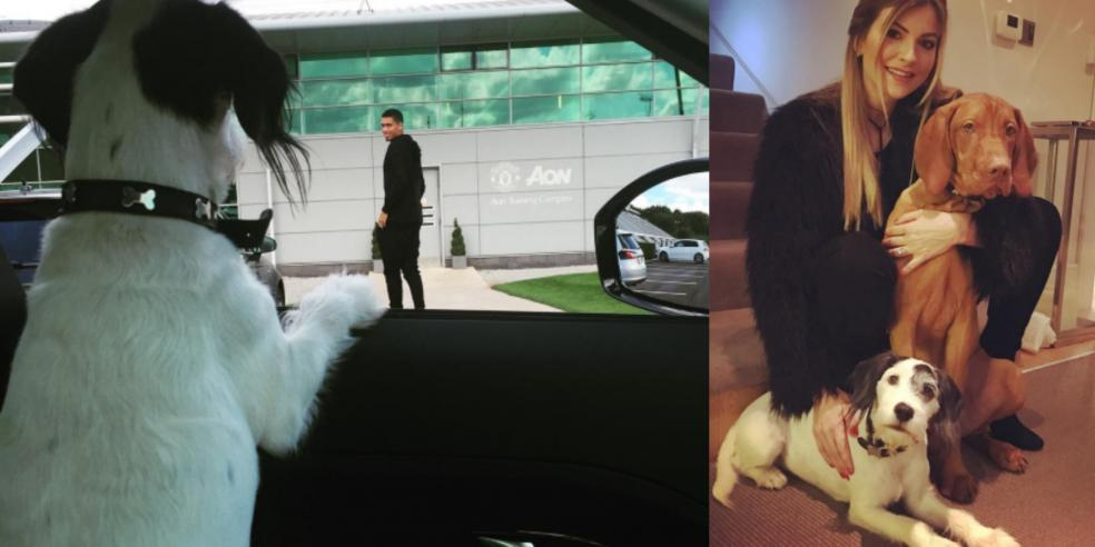 Chris Smalling with his girlfriend Sam Cooke and dog Ruben