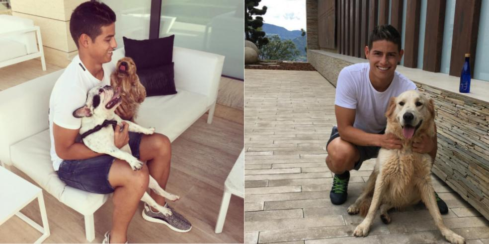 James Rodriguez with his three dogs
