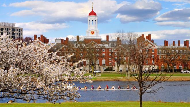 Harvard suspends men's soccer