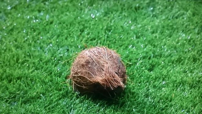 Edinburgh Derby Coconut