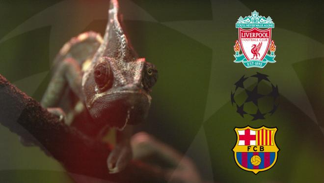 Barcelona Liverpool UCL Prediction