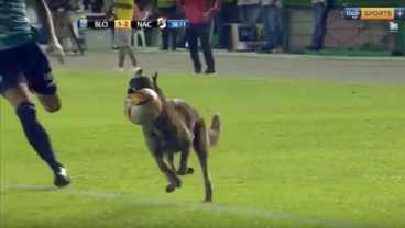 Pitch Invader Who Popped Ball Finally Corralled By Police