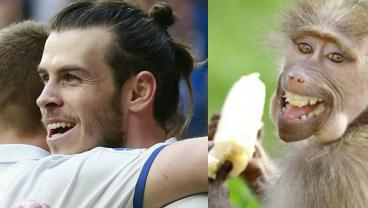 15 Footballers Who Look Like Animals