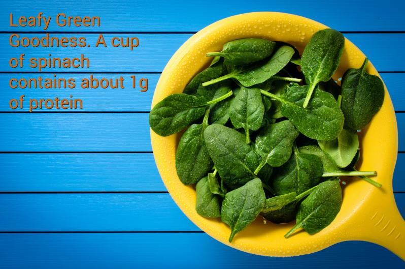 Spinach Protein By Weight